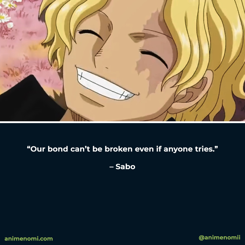 the-best-anime-quotes-from-one-piece-quote-eight
