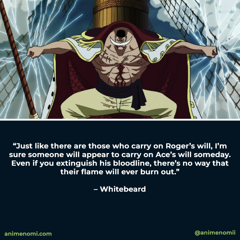 the-best-anime-quotes-from-one-piece-quote-five